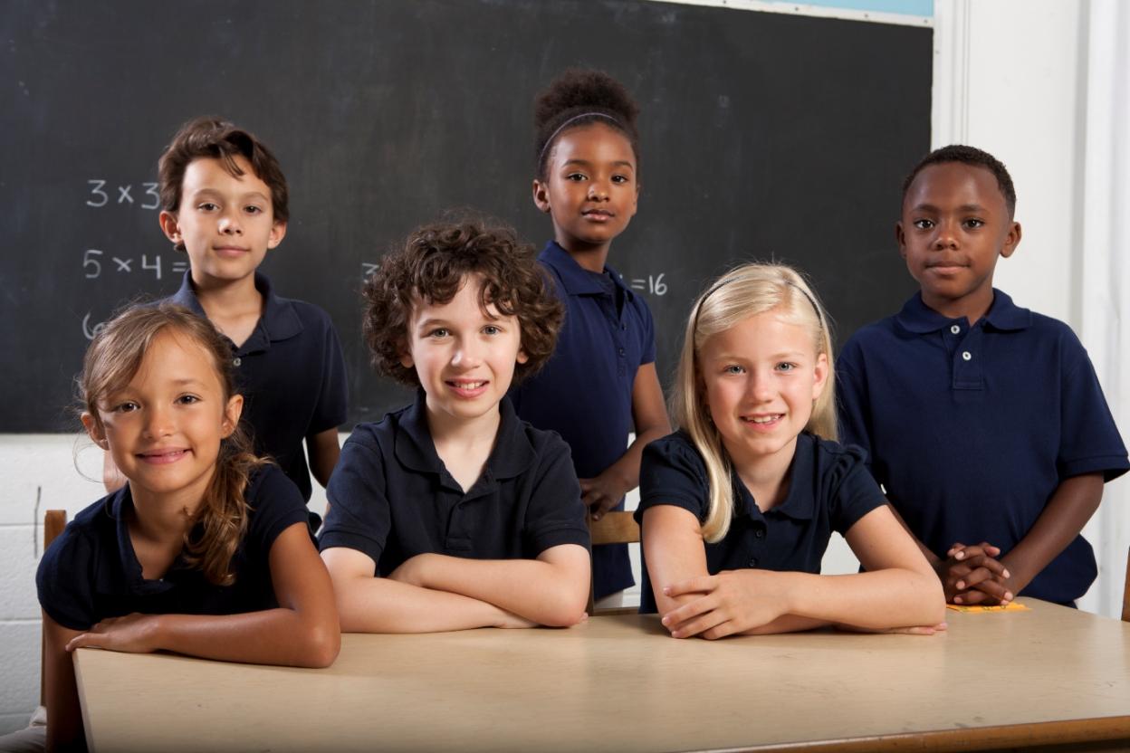 Academy Trusts & Free Schools