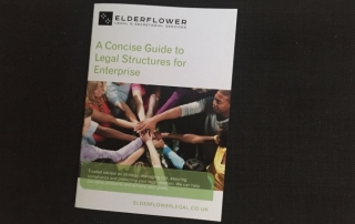 Concise Guide to Legal Structures for Enterprise by Elderflower Legal