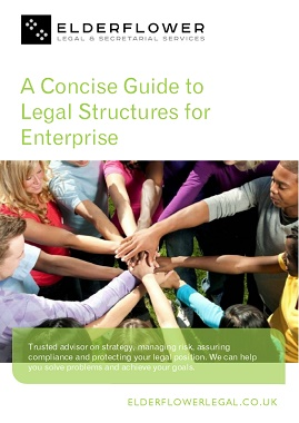 A Concise Guide to Legal Structures for Enterprise
