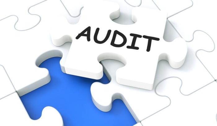 Effective Audit Committee II